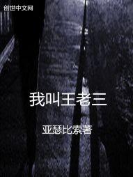 我叫王老三